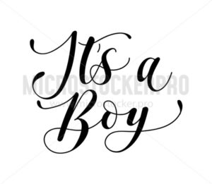It's a boy calligraphy inscription isolated on white background. Baby boy shower lettering for invitation or greeting card. Vector illustration. - Vector illustrations for everyone | Microstocker.Pro