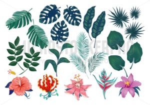 Cute tropical stickers and labels. Summer set of leaves and flowers. Vector illustration - Vector illustrations for everyone | Microstocker.Pro