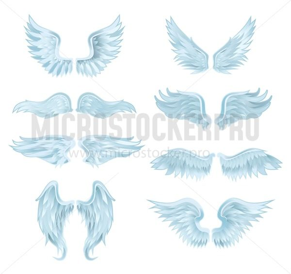 Set of angel wings isolated on white background. Vector illustration - Vector illustrations for everyone   Microstocker.Pro