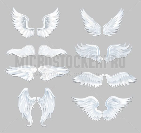 Set of beautiful angel wings isolated on grey background. Vector illustration - Vector illustrations for everyone | Microstocker.Pro