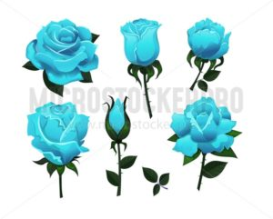 Set of decorative blue roses isolated on white background.Colorful vector roses for invitations, greeting cards, posters etc. - Vector illustrations for everyone | Microstocker.Pro