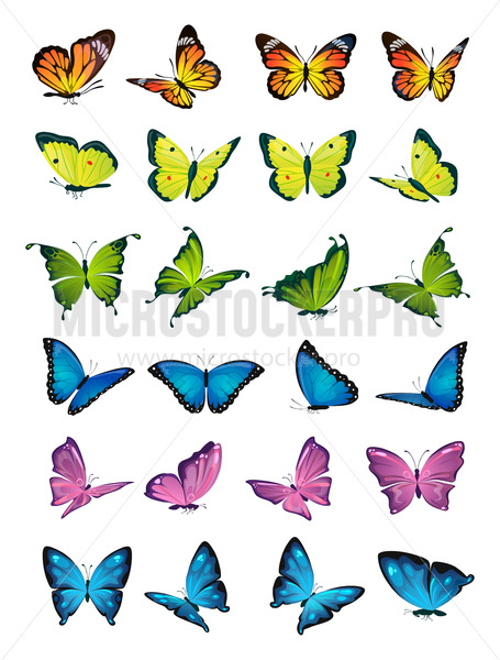 Butterflies flying set on white background - Vector illustrations for everyone   Microstocker.Pro