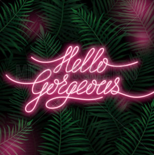 Hello gorgeous neon lettering postcard with spruce - Vector illustrations for everyone | Microstocker.Pro