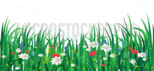 Blooming summer flowers with green grass - Vector illustrations for everyone | Microstocker.Pro