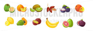 Cartoon tropical exotic fruits set on white background - Vector illustrations for everyone | Microstocker.Pro
