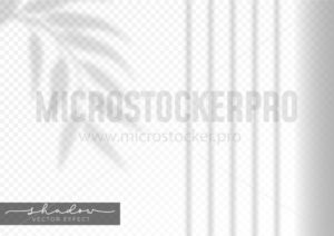 Realistic leaf shadow effect on transparent background - Vector illustrations for everyone | Microstocker.Pro