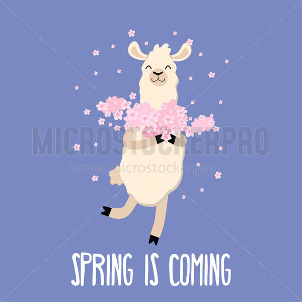 Spring is coming cute card with funny llama - Vector illustrations for everyone | Microstocker.Pro
